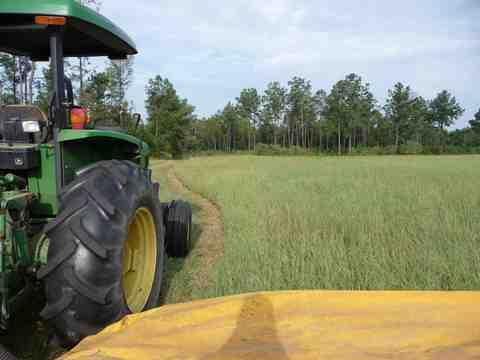 Last_hay_cutting_2008_006_thumb4