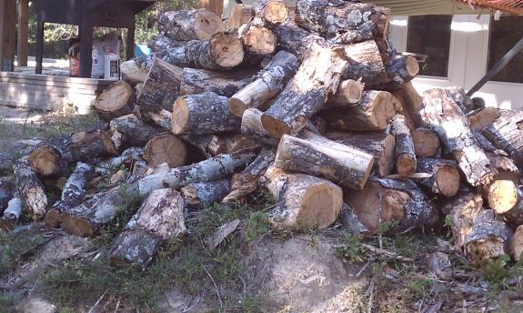 firewood_fixed